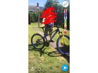 Bike for swaps