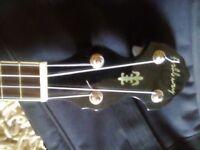 Ashbury Banjolele