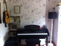 Piano Lessons available for adult beginners with friendly, professional tutor