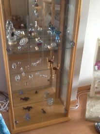 Glass cabinet with light