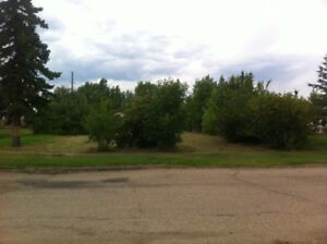 Vacant lot with mature growth in Rycroft