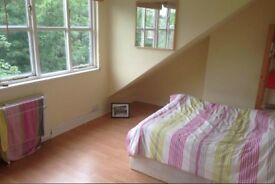 2/3 Bedroom Flat in Finsbury Park