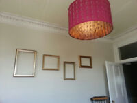 Stockbridge Flat - Double Room Available - Short Term