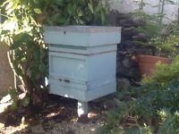 Bees and hive for sale