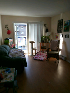 Big 5 1/2 for rent châteauguay