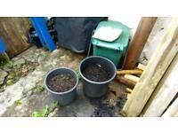 Plastic garden plant pots and soil