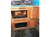 Bunny business 41inch double hutch
