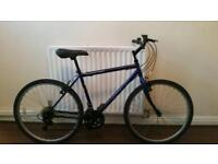 ADULT MAGNA MOUNTAIN BIKE
