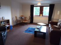 Cosy Double Room in Spacious 2-Bed Flat :)