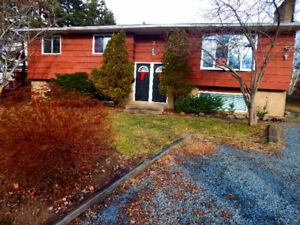 All included - 2 bedroom basement apartment