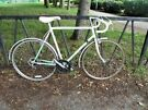 Large Vintage Road Racer Racing Bike Bicycle. Fully Serviced, ready To Ride & Guaranteed. 12 Speed