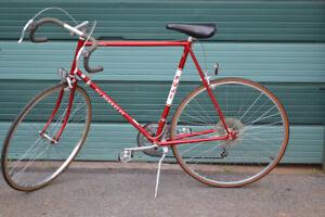 Vintage Fuji Berkely Road Bike