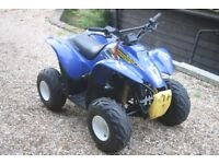 Kids Quad Bike Polaris Scrambler 50cc quad rev and go