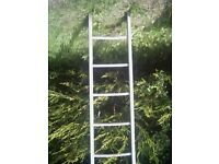 small ladderabout 5ft?