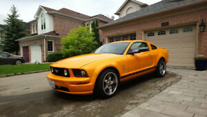 Must Sell Orange Ford Mustang Pony Edition in Mint Condition