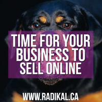 Looking for a Website? Start Selling Online NOW! Cheap Best SEO!