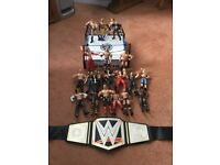 WWE wrestling ring, 20 wrestling figures and world heavyweight champion belt