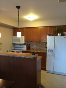 Room for Rent 300 Spillsbury drive