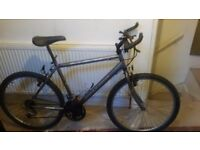 GREY MAN SIZE RALEIGH MAX BIKE FOR SALE