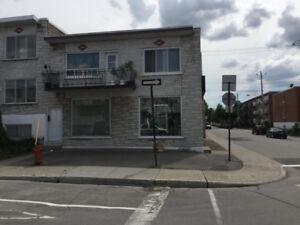 Reprise de finance – Duplex à vendre à Montréal