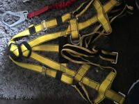 Big Ben safety harness