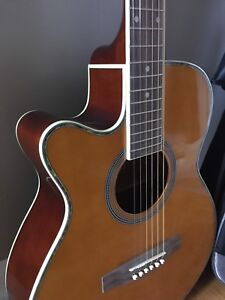 Acoustic Guitar  (SOLD PPU)