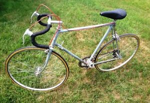 Falcon 12 speed road bike XL collectors by Ernie Clements