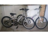 Two Giant Mountain Bikes Junior/child great for Summer want gone quicky north wales toys size 20x20