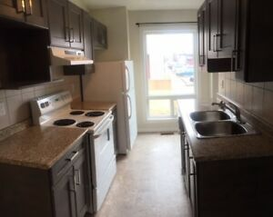 Renovated Town house For Rent in Millwoods , Reduced Rent