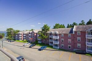 1 Bdrm available at 40 Charlotte Lane, Halifax