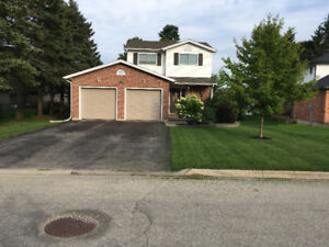 Beautiful home for sale in Palmerston