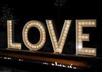 Marquee Wedding Love Sign for Rent Only $350!