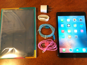 Apple iPad mini 32GB with case and charger