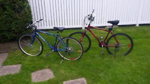 Vélo vraiment pas cher