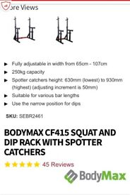 Squat rack with spotters & dip bars