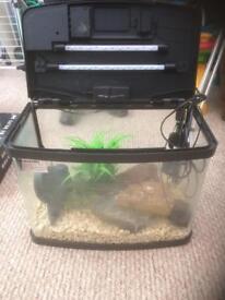 Love Panorama Fish Tank 40L