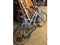 Pair of old bikes free for uplift