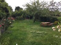 Single room in Grove Park Lee Lewisham