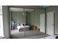 Large Mirror Sliding Doors