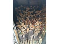 Dried logs