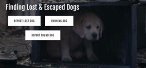 FLED - Finding Lost & Escaped Dogs - Vancouver Island