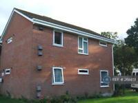 1 bedroom flat in Binghams Road, Dorchester, DT2 (1 bed)