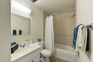 Great 1 bedroom apartments available now! Edmonton Edmonton Area image 8