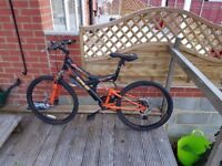 Nice Double Disc Brake Mountain Bicycle