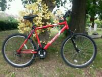 *excellent condition* Apollo Mountain bike