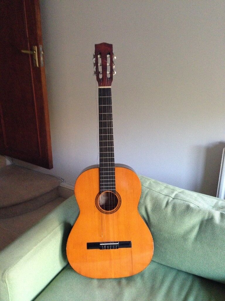 Hokada Acoustic Guitar with Waterproof Carry Case