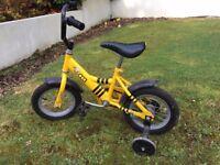 Bee bike - first bike