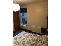 Large Double Room in 2 Bed Flat with Garden Alexandra Palace