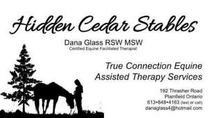 True Connection Equine Assisted Therapy Services