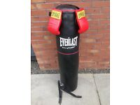 Everlast punch bag, bracket and gloves
